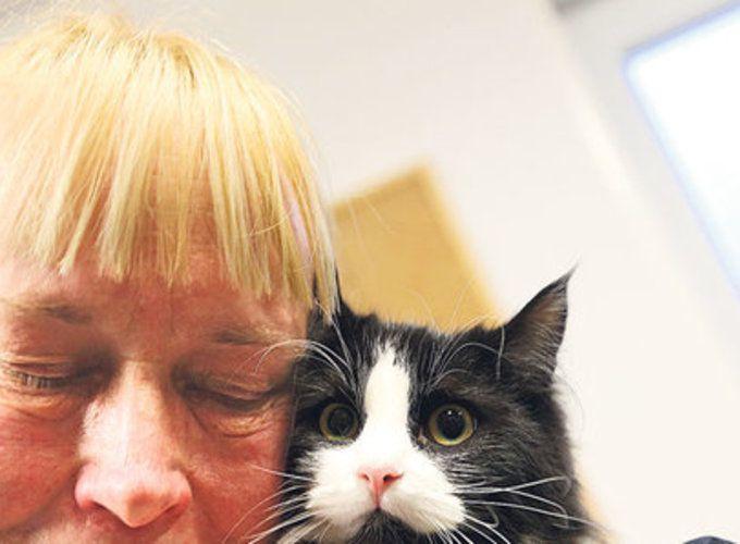Кошки и собаки спасают людей от одиночества