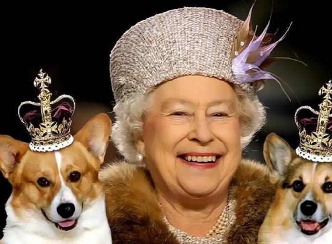 Королева Елизавета и её любимые животные