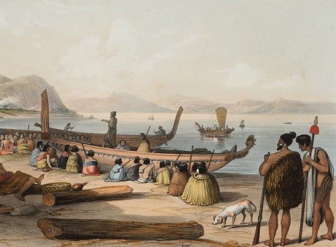 Прочитан геном древнейших собак Новой Зеландии