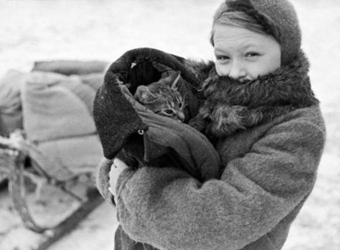 Легендарные животные блокадного Ленинграда
